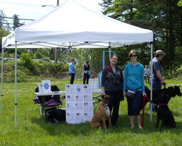 Volunteering event